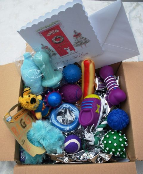 CHRISTMAS SMALL DOG PUPPY TOY SET 15 XMAS DOG TOYS IN BOYISH BLUES & FREE CARD